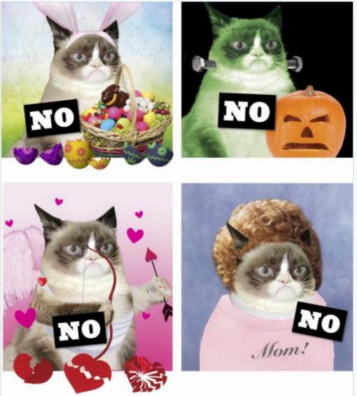 Grumpy Cat No it all book-holidays