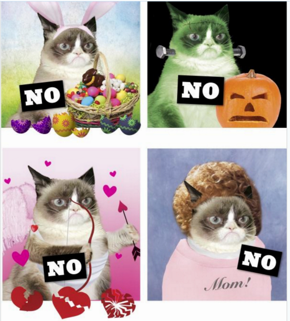 Grumpy Cat No it all book-holidays