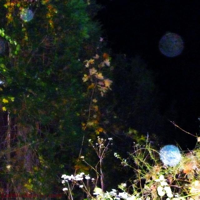 Halloweeen spirit orbs