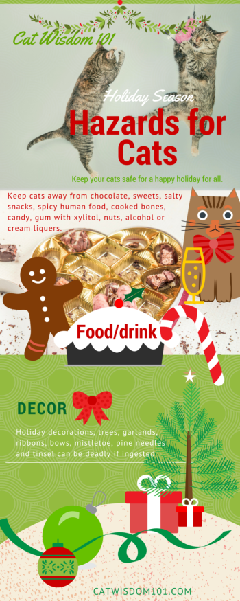 holiday_hazards_cats_infographic