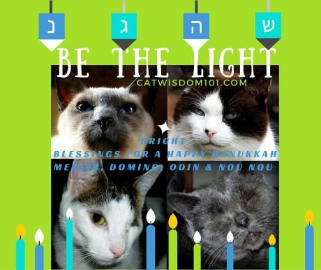 Hanukkah_cat_Be the Light