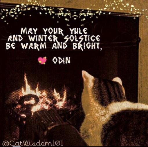 Yule_cat