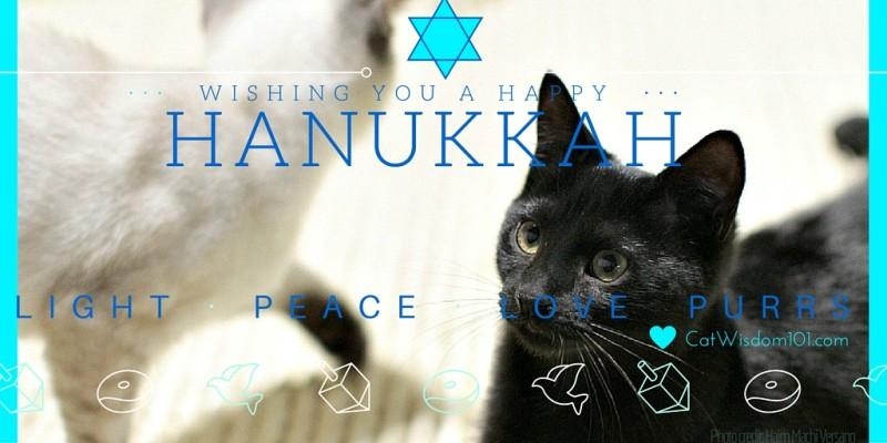 cat Hanukkah_card