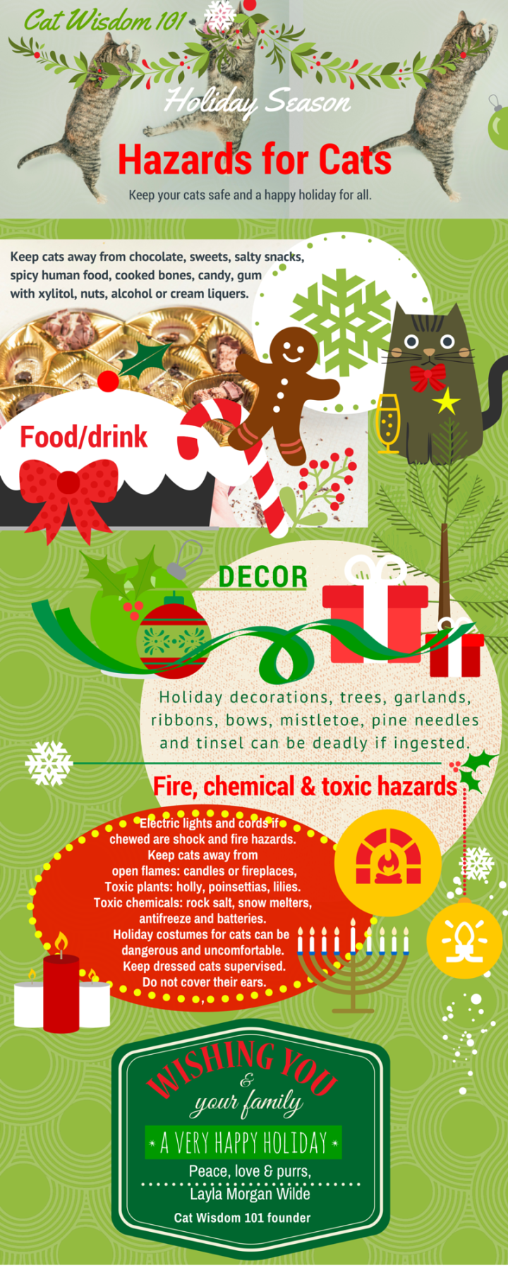 cat wisdom 101 holiday cat hazards infographic