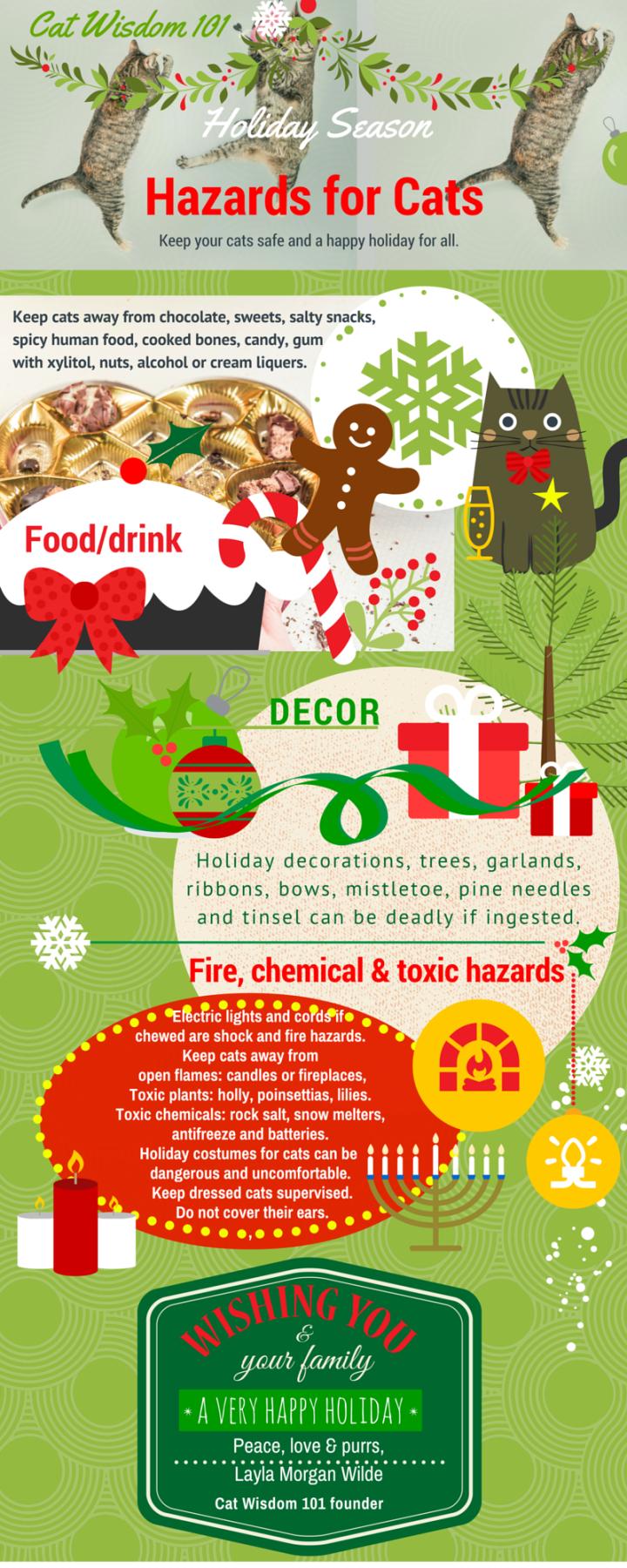 cat wisdom 101 holiday cat hazards infographic
