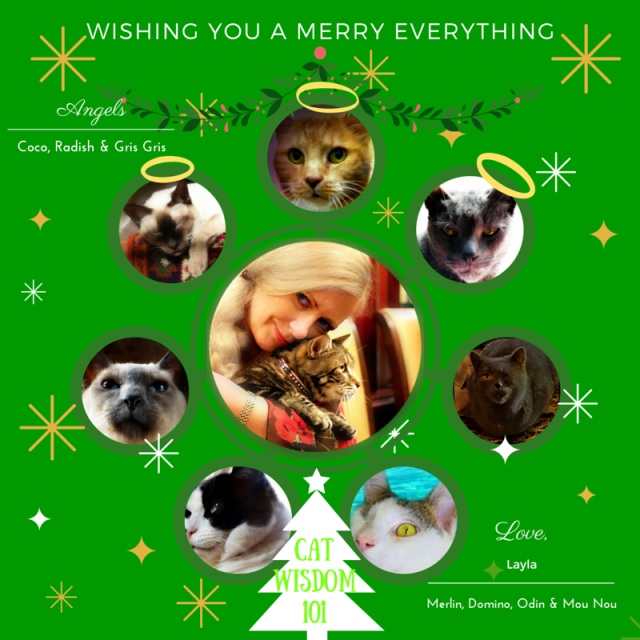 Merry_everything_cats