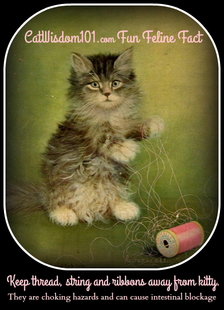 Antique_art_kitten