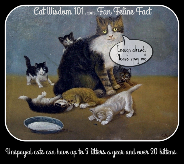 Antique_art_kittens_cat
