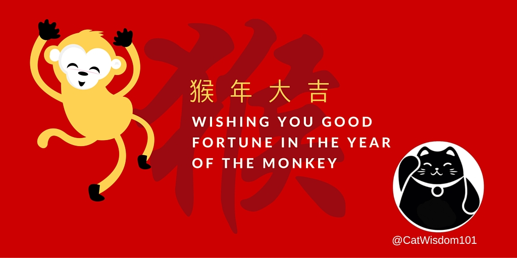 Chinese_new_Year_2016_cat