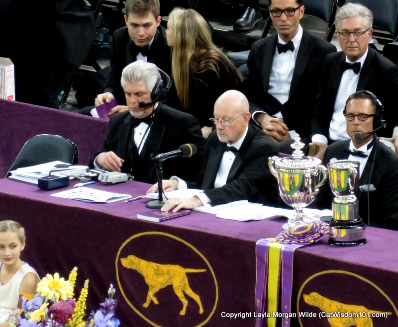 Westminster_Dog_Show_announcers