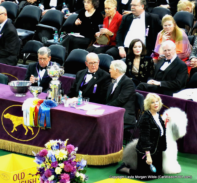 Westminster_Dog_Show_2016_judges