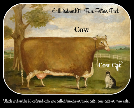 antique_cat_art_cow