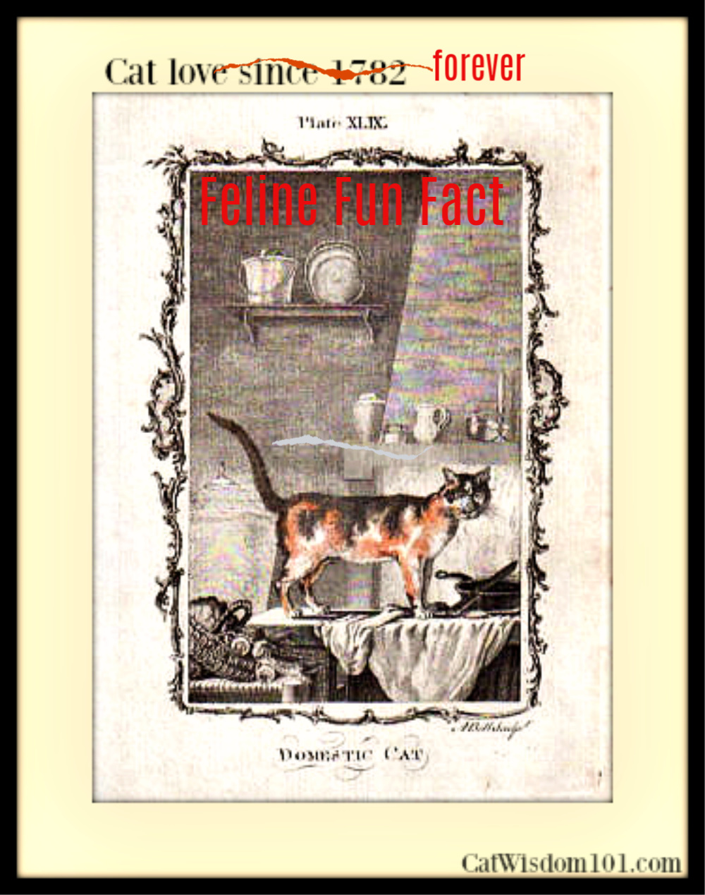 antique_cat_art_feline-fun-fact