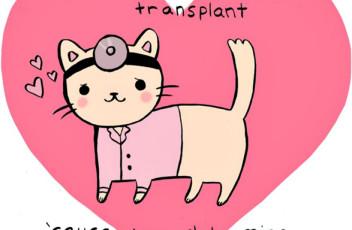 cat_valentine_heart_cartoon_sobole