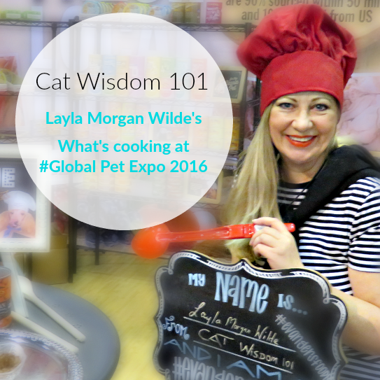 What's Cooking at Global Pet Expo: Top 5 Cat Foods