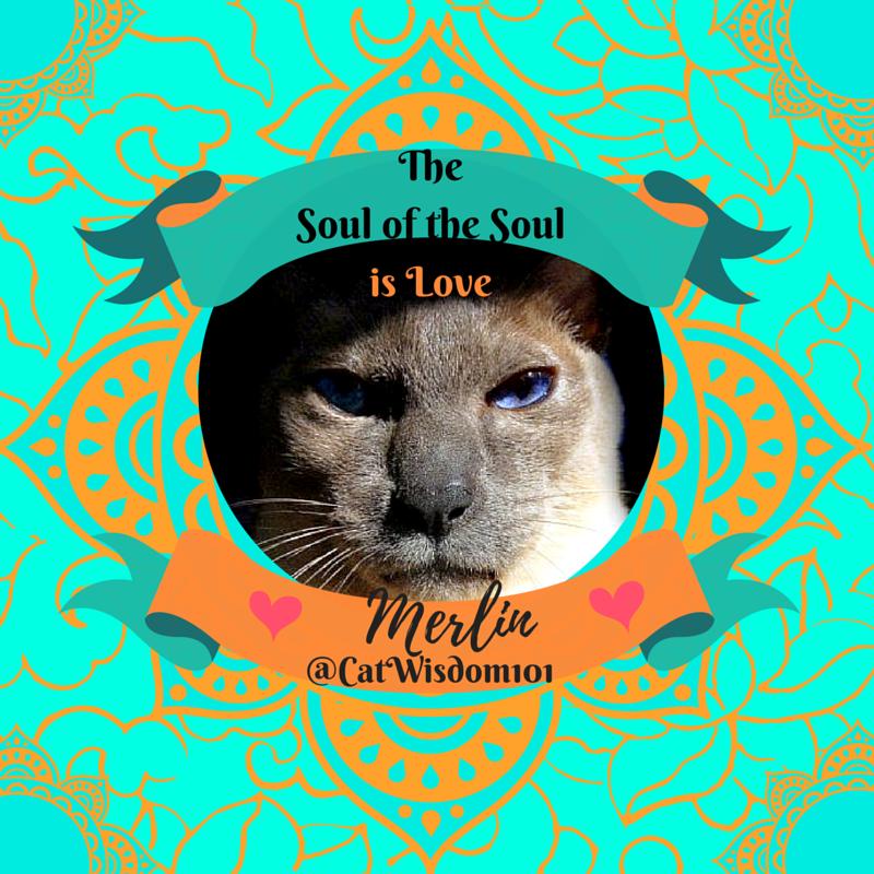 8f48ed2809 ... we created a new Pinterest Board VINTAGE BLACK CAT ADVERTISING. Take a  peek