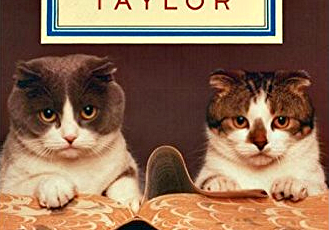 baker and taylor_library_cats