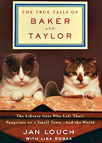 literary_lions_library_cats