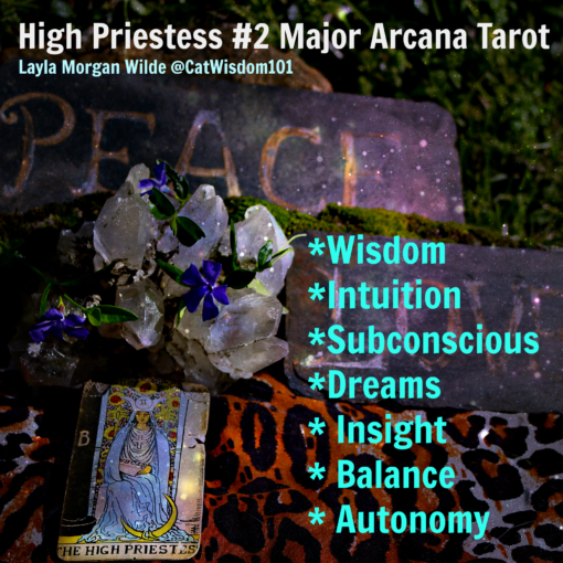 Tarot_high_priestess