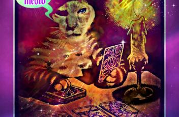 cat_tarot