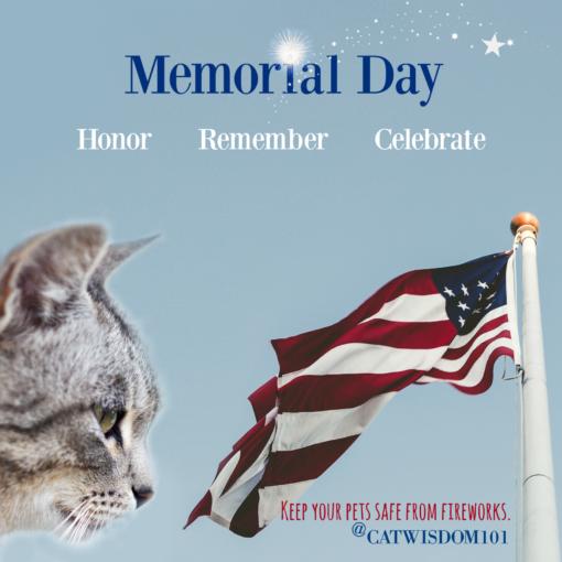 memorial_Day_meows