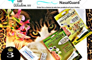 nasalguard_giveaway_cats