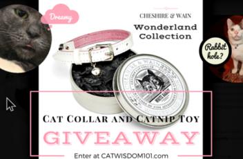 Cheshire&Wain_giveaway_wonderland