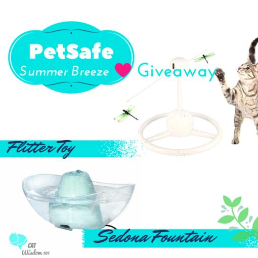 petsafe_summer_giveaway