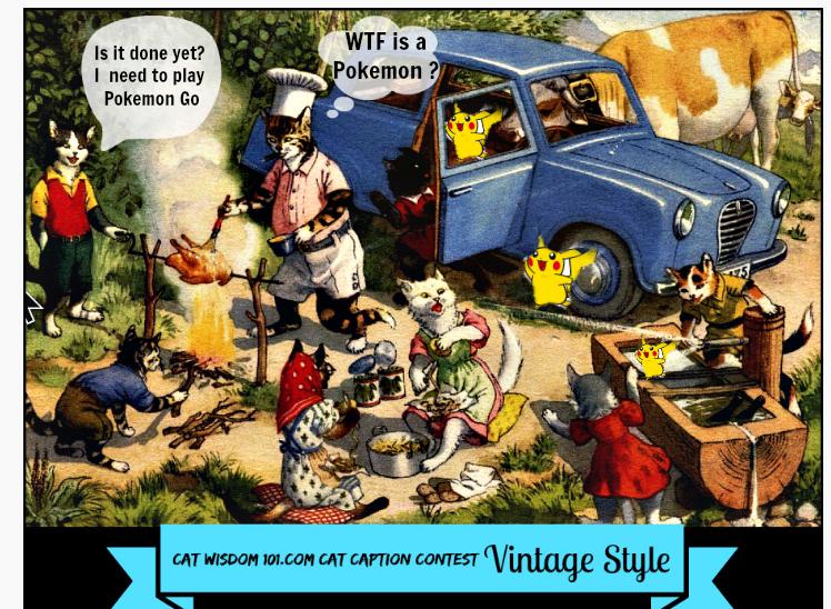 vintage cats go pokemon go