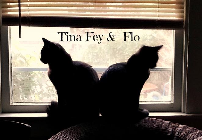 Tina_Fey_flo_cats