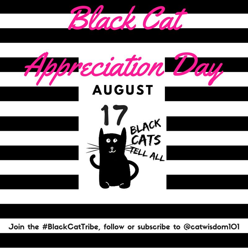 black cat appreciation day-
