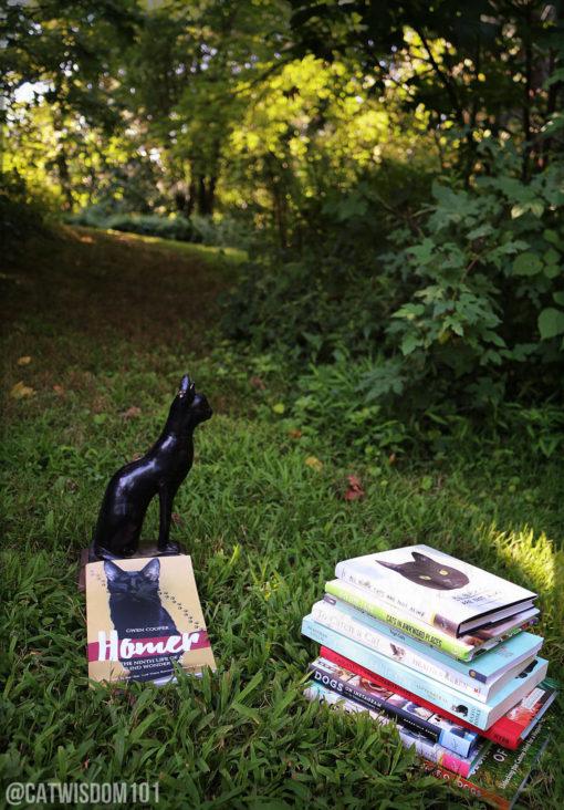 cat_books