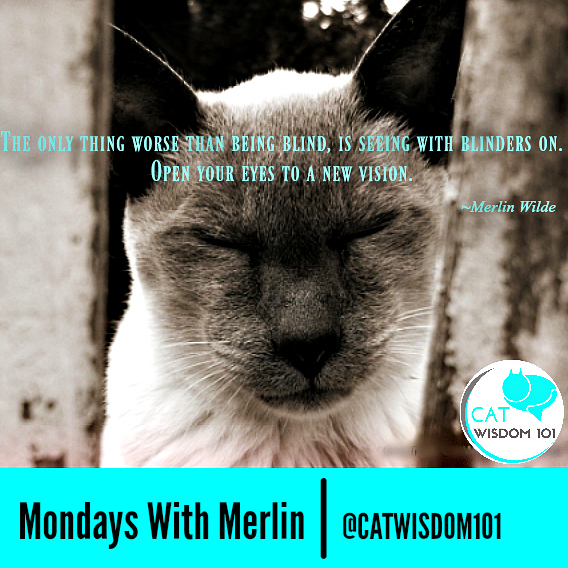 Blind Quotes: Mondays With Merlin: Lessons In Being Seen By A Blind Cat