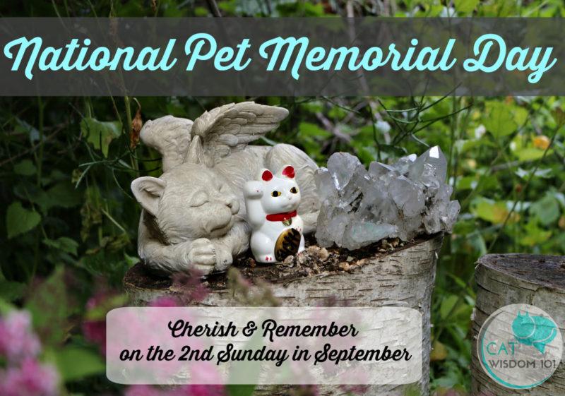 national_pet_memorial_day