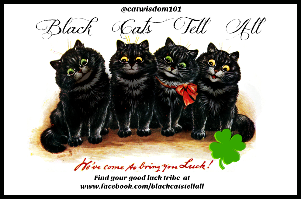 vintage_blackcat_good_luck