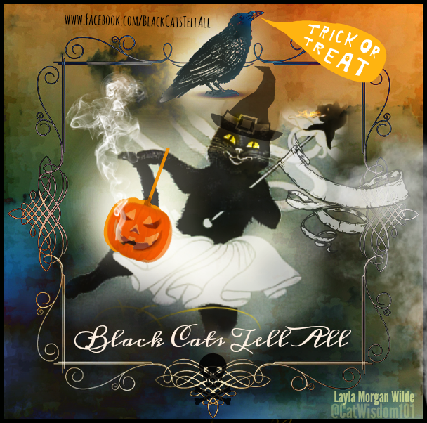 magical cats Halloween