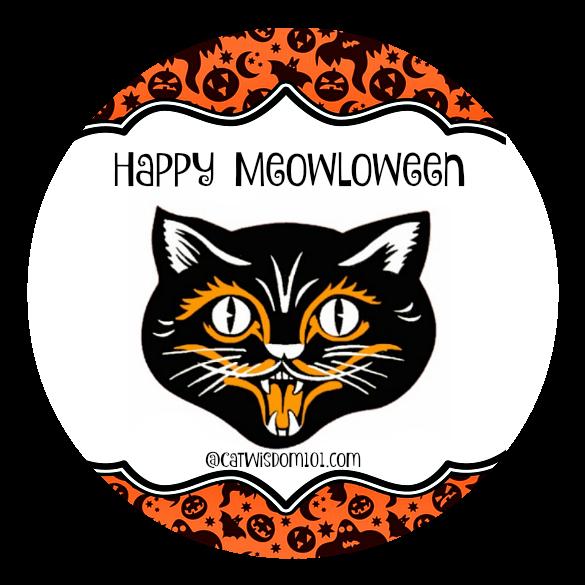 halloween_round_meowloween