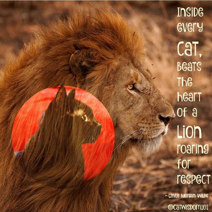 lion_cat_quote