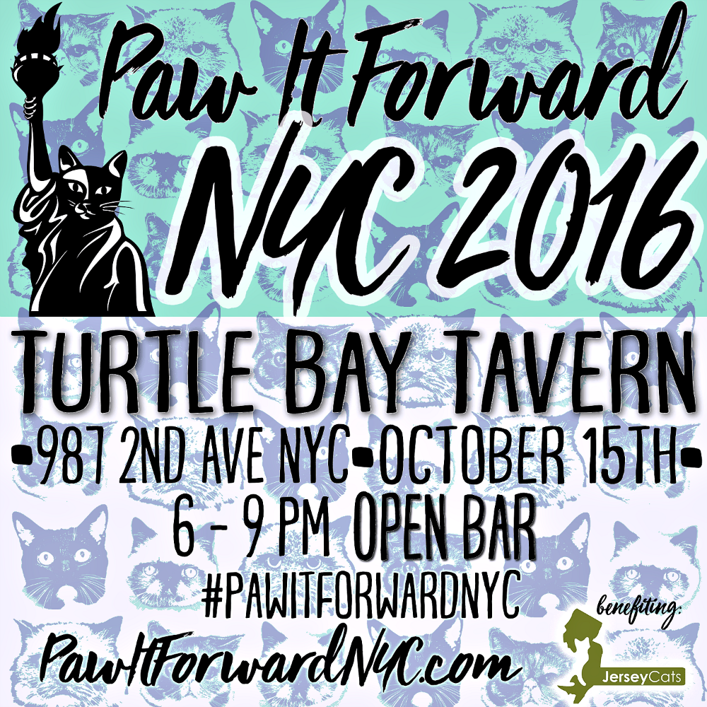 Paw It Forward NYC: Have Fun, Help Animal Shelters