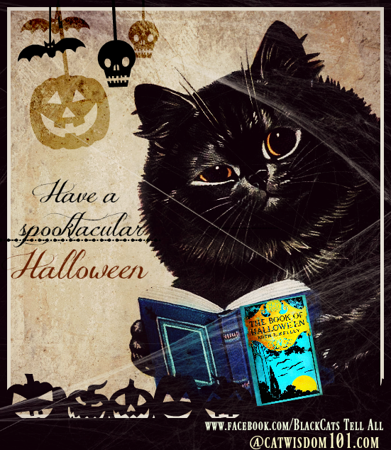 vintage_black_cat_halloween_book