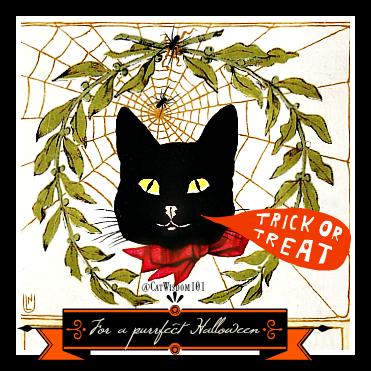 vintage_halloween_cat_web