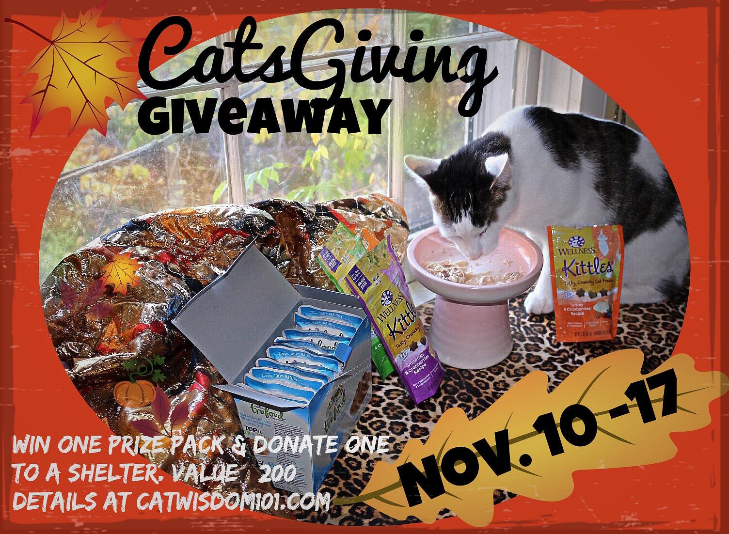 catsgiving_wellness_giveaway