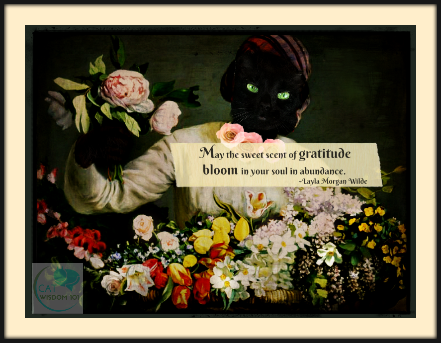 gratitude_abundance_quote