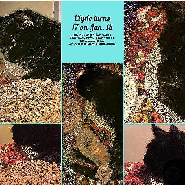 Clyde_birthday