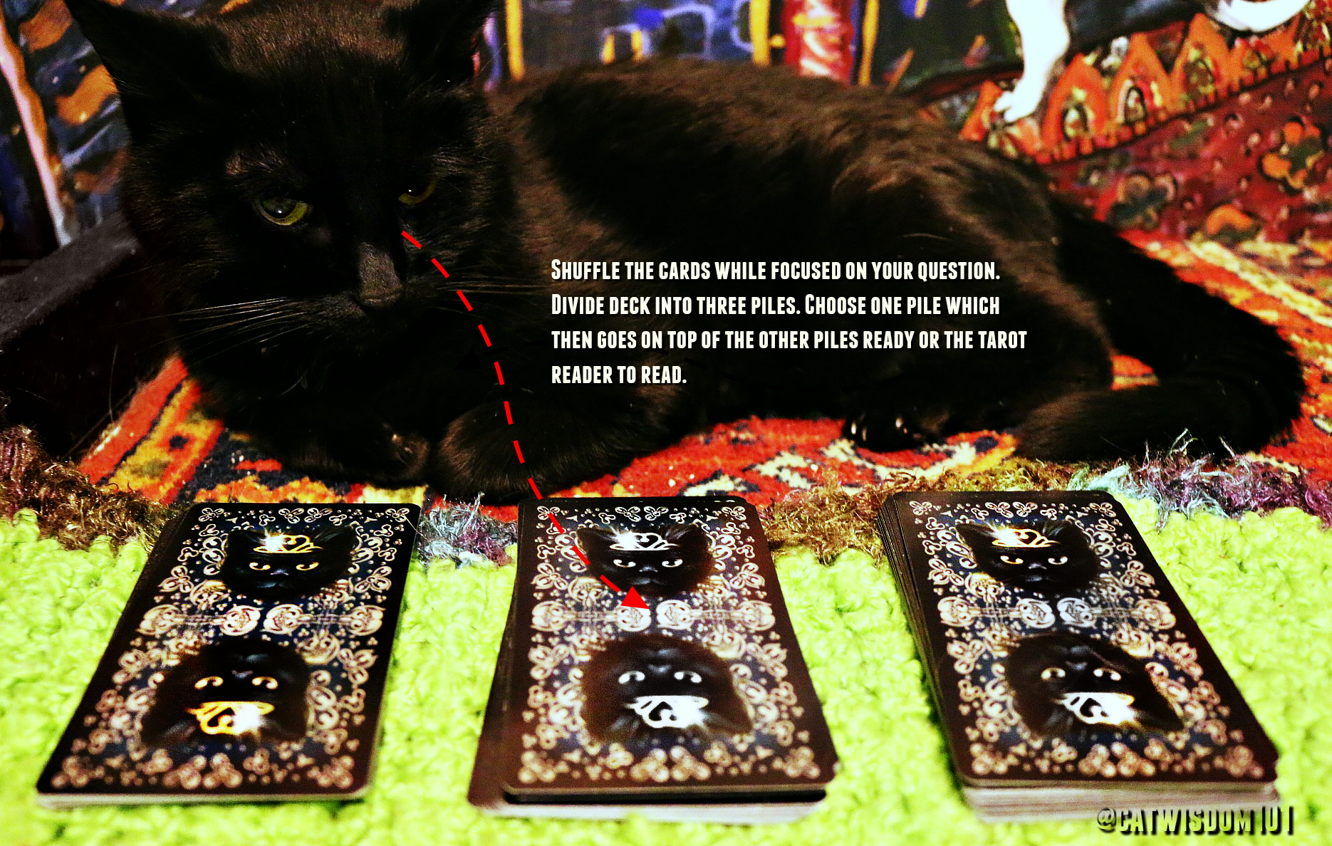 #PsychicCatClyde