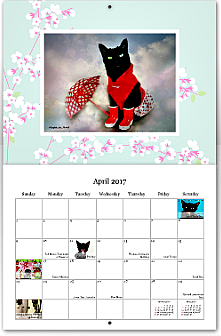 black cats tell All calendar