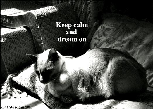 merlin_bw_keep-calm