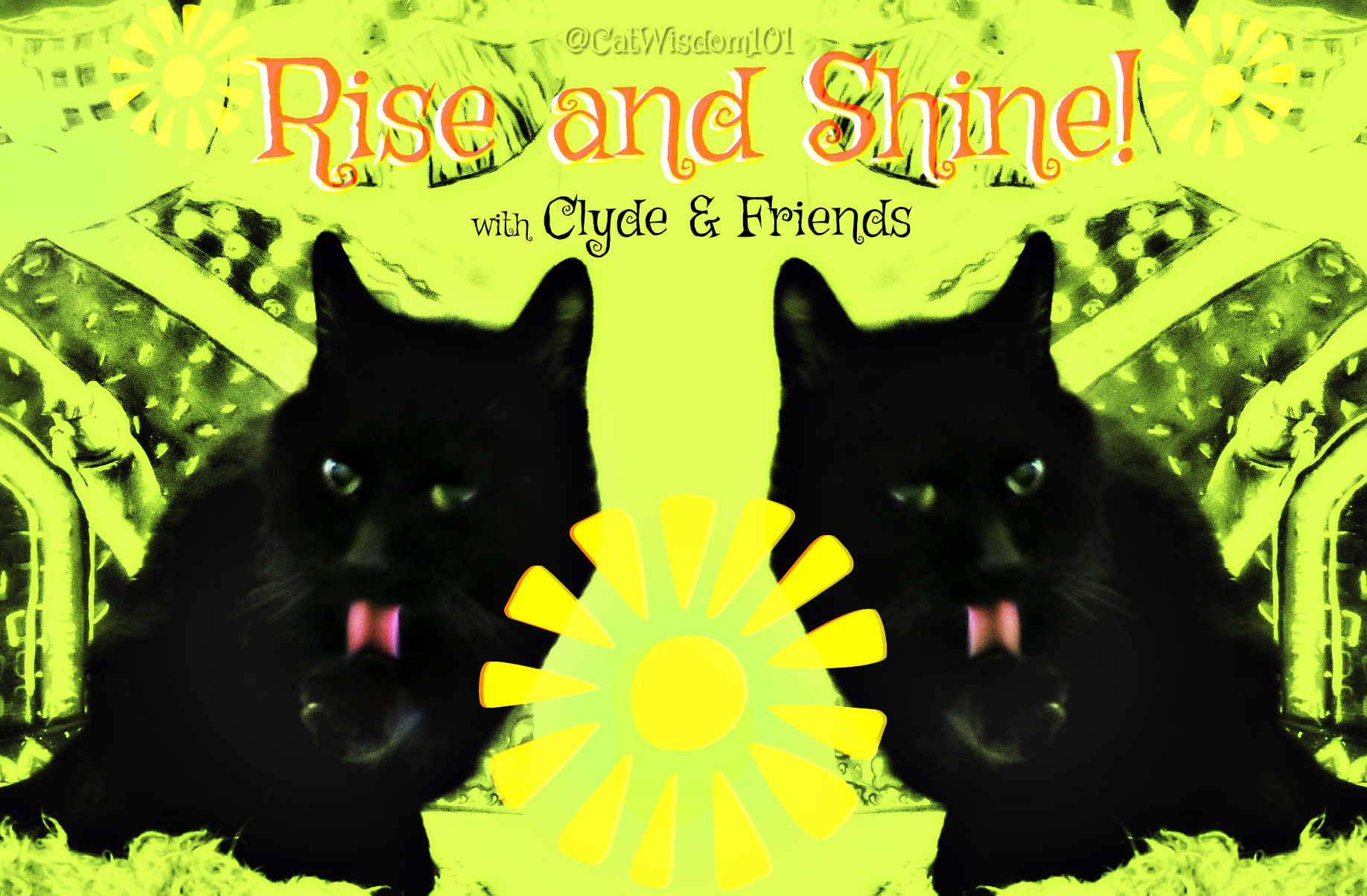 rise and shine_clyde_cat