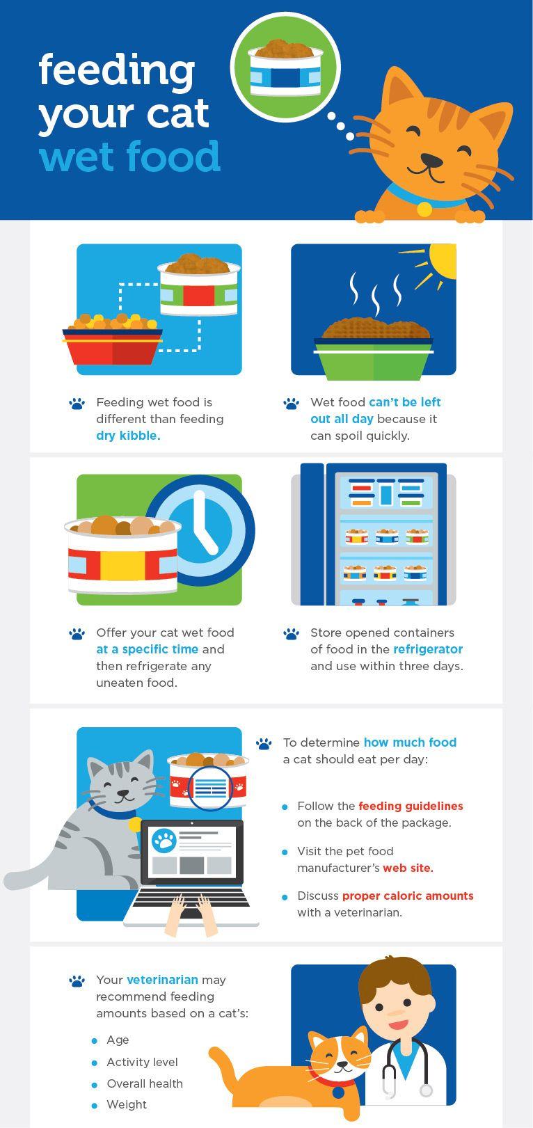wet_cat_food