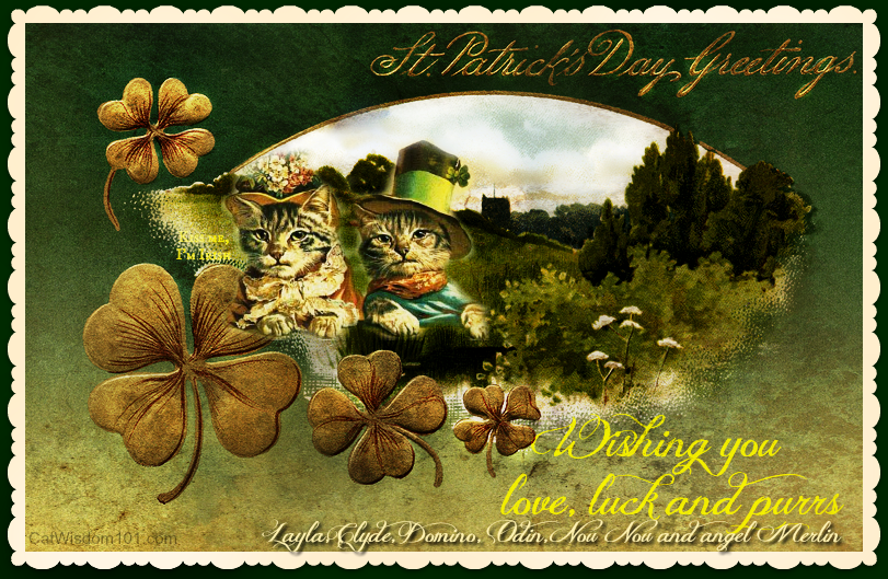 St. Catrick Patrick's Day
